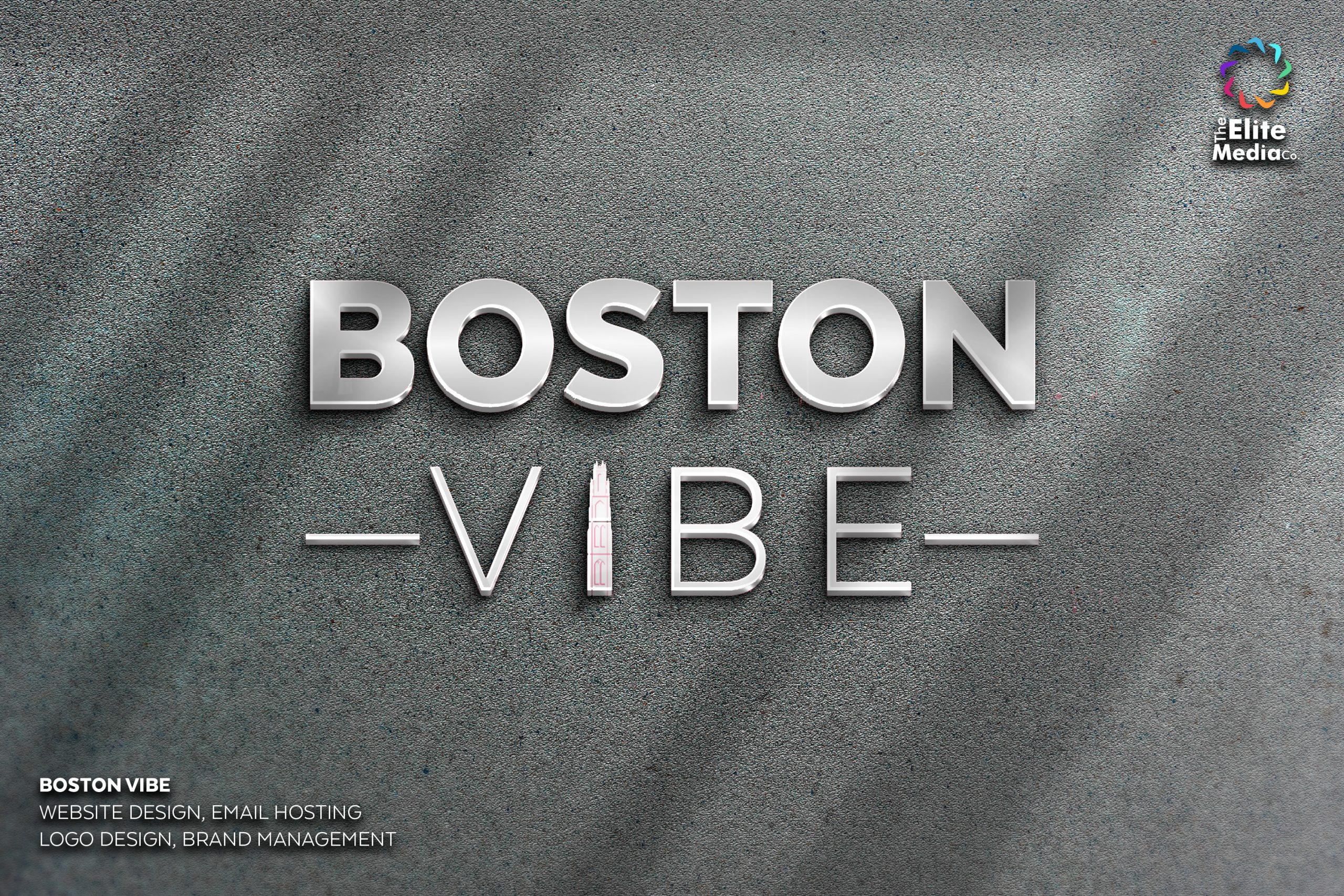 Boston VIBE – Logo